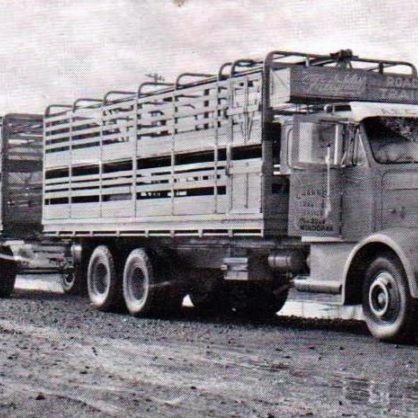 Channel Transport Aec Bonnetted Mammoth Cattle Roadtrain